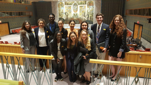 2017 Institute students at the United Nations