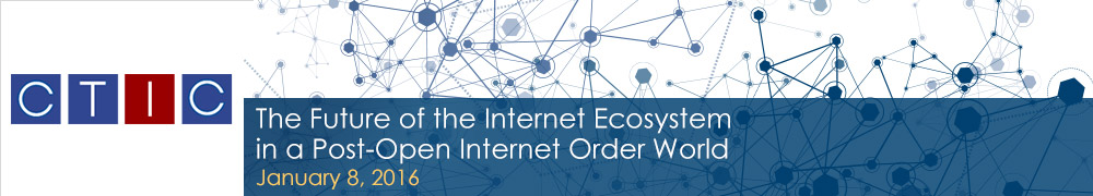 Future Internet Eco System